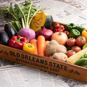 商品撮影(物撮り) 野菜セット